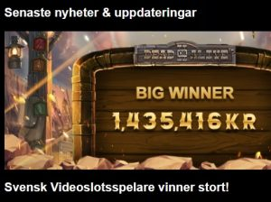 Spelare vann 40 000x gånger insats på Dead or Alive 2!